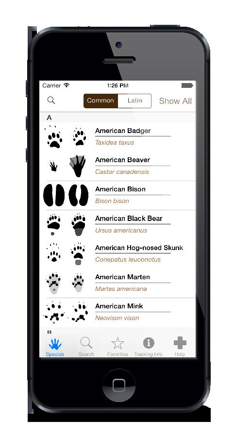 Apple-iPhone-5-Vectorized-Mockup