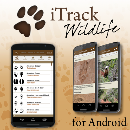 iTrack Android Instagram Add2